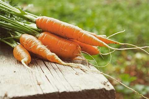 seizoensgroente wortel